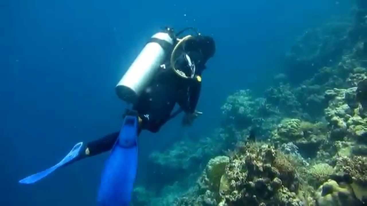 snorkel/diving